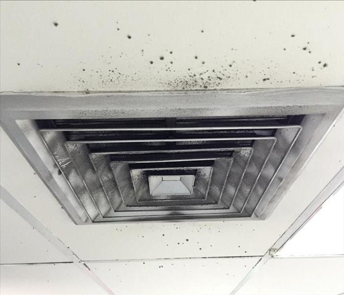 Black mold spots around an air duct