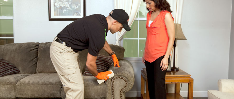 Fountain Valley, CA carpet upholstery cleaning
