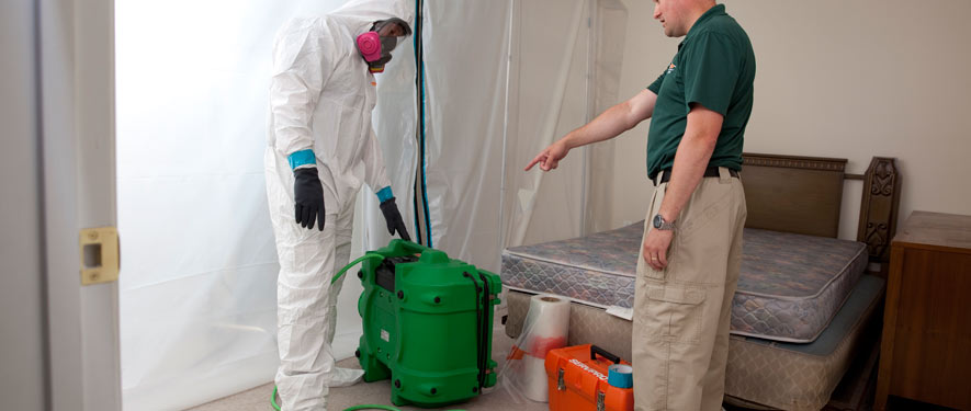 Fountain Valley, CA mold removal process
